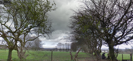 Greener days: the trees as they were (Google street view)