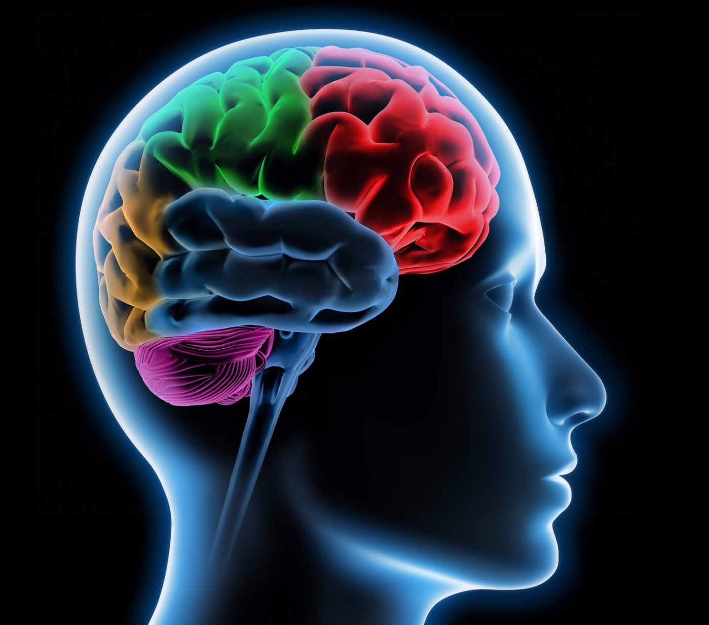 Study uses MRI brain scans to examine the 'Neurobiology of Climate ChangeDenial'